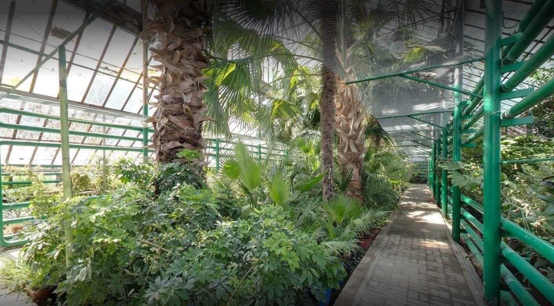 Ботанический сад ЮФУ
